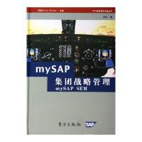 MYSAP集团战略管理