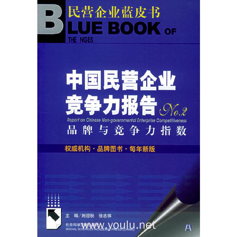 中国民营企业竞争力报告NO.2:品牌与竞争力指数