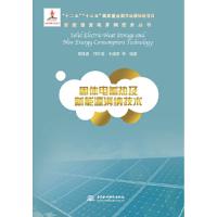 新能源发电并网技术丛书:固体电蓄热及新能源消纳技术