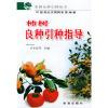 柿树良种引种指导/果树良种引种丛书(果树良种引种丛书)