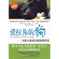 爱抚你的狗——为爱犬量身定做按摩流程