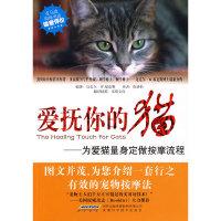 爱抚你的猫——为爱猫量身定做按摩流程