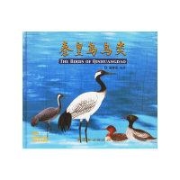 秦皇岛鸟类
