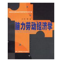 脑力劳动经济学——新世纪高校经济学管理学新学科教材