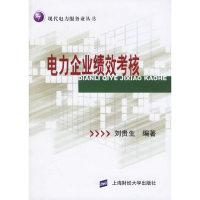 电力企业绩效考核——现代电力服务业丛书