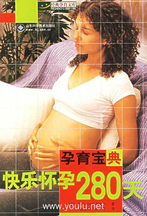 快乐怀孕280天——孕育宝典