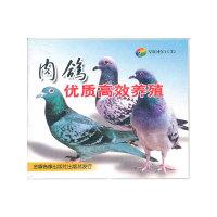 肉鸽优质高效养殖配套盘