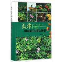 天津山区野生植物图鉴(精)